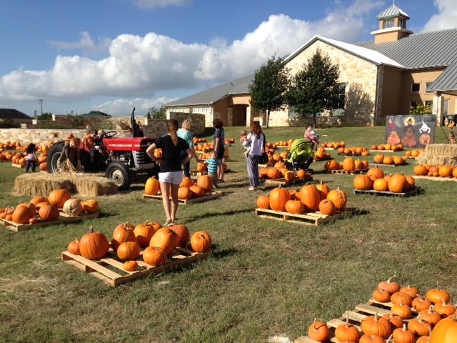 It S Pumpkin Patch Time At San Gabriel Presbyterian Church Georgetown TX Re